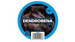 žížaly dendrobeny